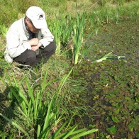 Site Visit to Pool Frog Ponds 3rd Sept 2014 © NWT