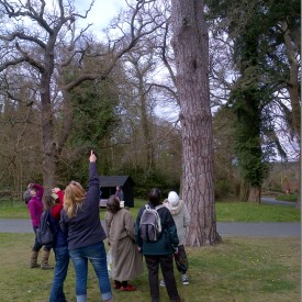 Discovery (Owl activity) 22-04-15