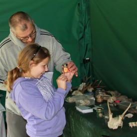 Wild Activities (25-05-15) Discovery Table with RSPB and FC