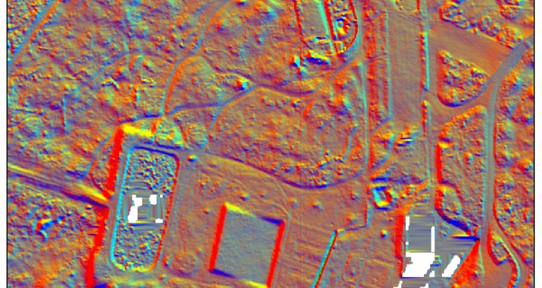 LiDAR image of Brandon Country Park